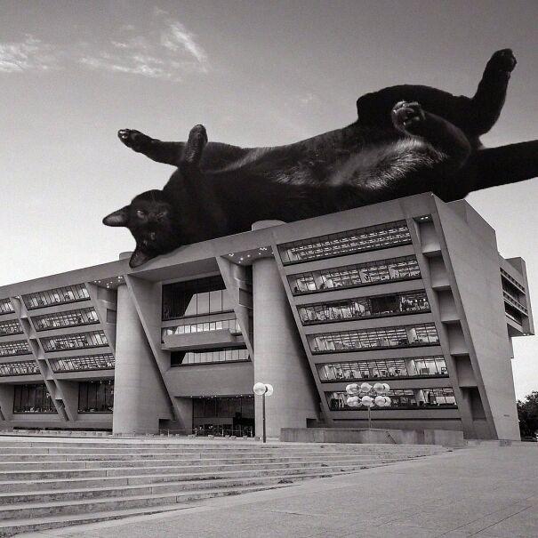 Dallas City Hall; I.M Pei & Theodore Musho, 1978, Dallas, Texas