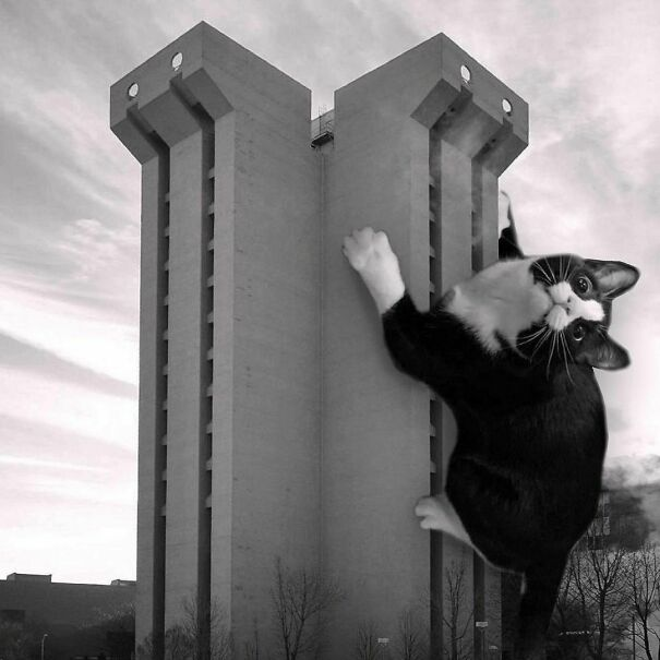 Crosley Tower, University At Cincinnati; A.M. Kinney Associates, 1969, Cincinnati, Ohio
