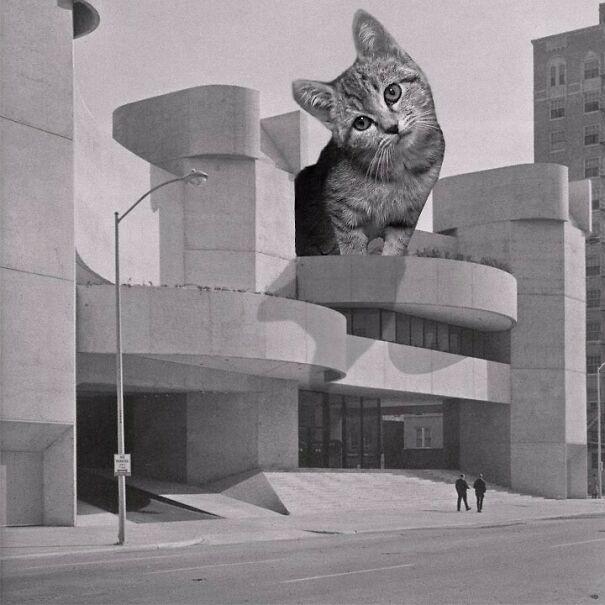 The Alley Theatre; Ulrich Franzen, 1968, Houston, Texas