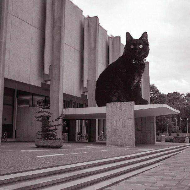 Samuel L. Paley Library, Temple University; Nolen & Swinburne, 1965, Philadelphia, Pennsylvania