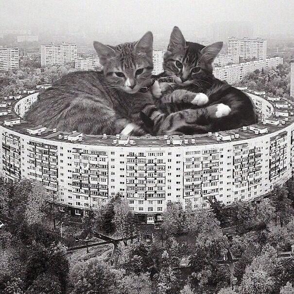 """Bublik"" Apartment Complex; Eugene Stamo, 1972, Moscow, Russia"