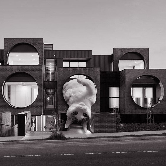 Cirqua Apartments; BKK Architects, 2017, Melbourne, Australia
