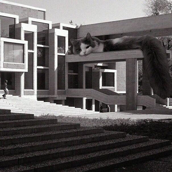 Orange County Government Center; Paul Rudolph, 1963, Goshen, New York