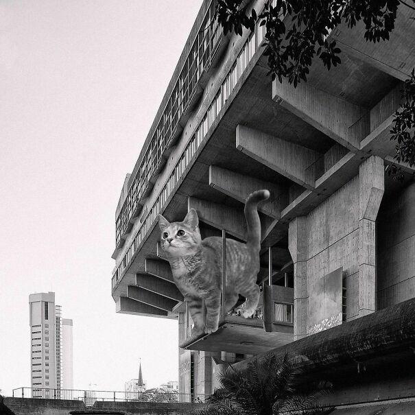 Biblioteca Nacional Mariano Moreno; Clorindo Testa, Francisco Bullrich & Alicia Cazzaniga, 1972 - 1992, Buenos Aires, Argentina