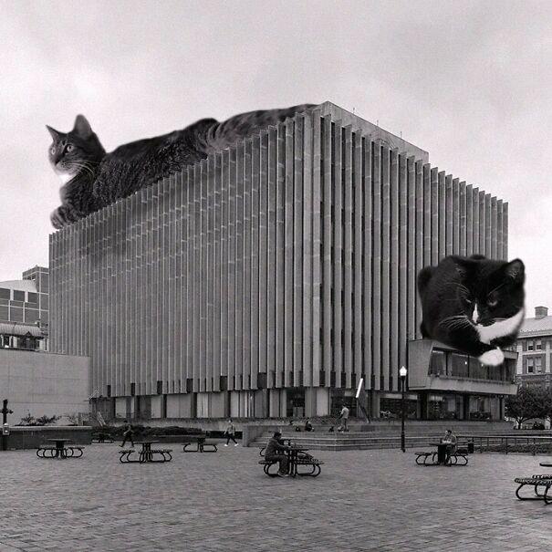Jerome L. Greene Hall, Columbia University; Harrison & Abramovitz, 1961, New York, New York
