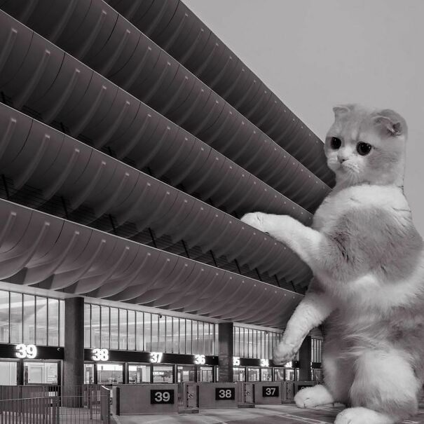 Preston Bus Station; Keith Ingham, Charles Wilson & E.H. Stazicker, 1969, Lancashire, England
