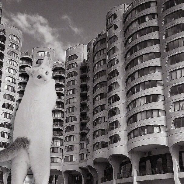 River City; Bertrand Goldberg, 1986, Chicago, Illinois