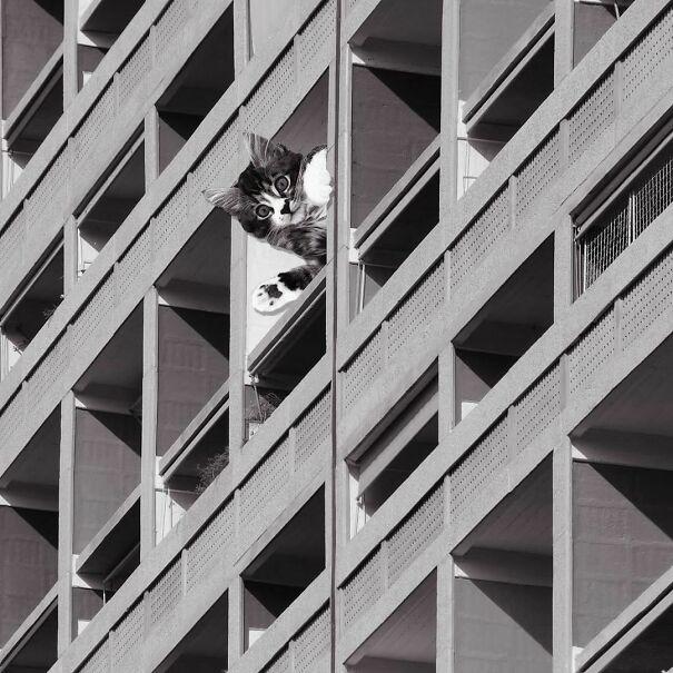 Unite D'Habitation; Le Corbusier, 1952, Marseille, France
