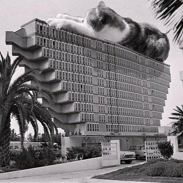 Hôtel Du Lac; Raffaele Contigiani, 1973,tunis, Tunisia