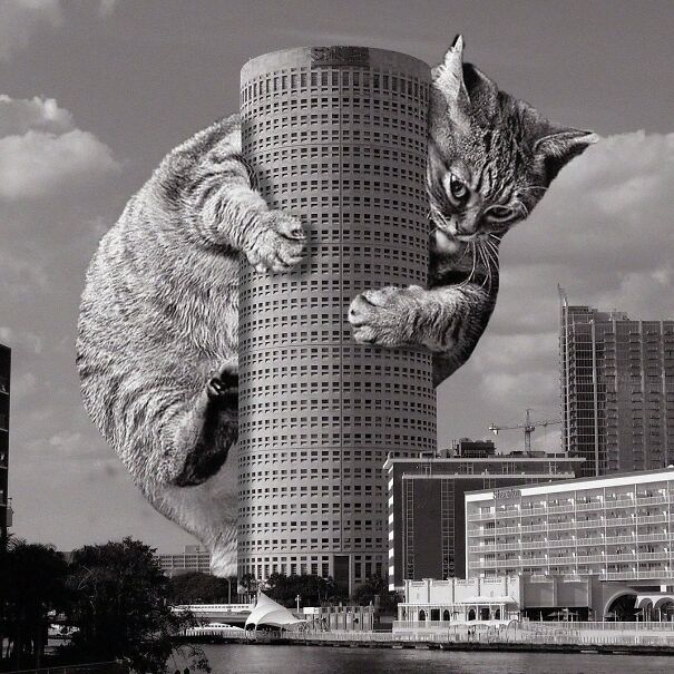 Rivergate Tower; Harry Wolf, 1988, Tampa, Florida
