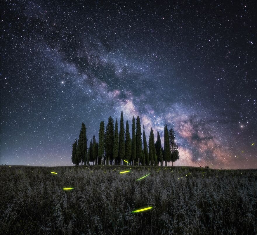 Lucciole Sotto Le Stelle (Commended In Nature And Landscape)