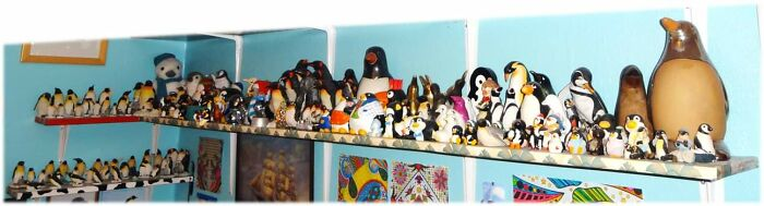 I Have Over 1000 Penguin Related Items. I've Been Collecting Them Since I Was Less Than 2 Years Old. These Are Just The Ornaments.