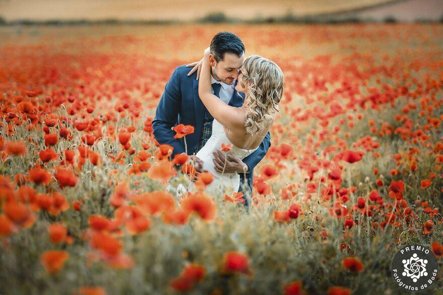Romantic Couple Photo By Domingo García Torres