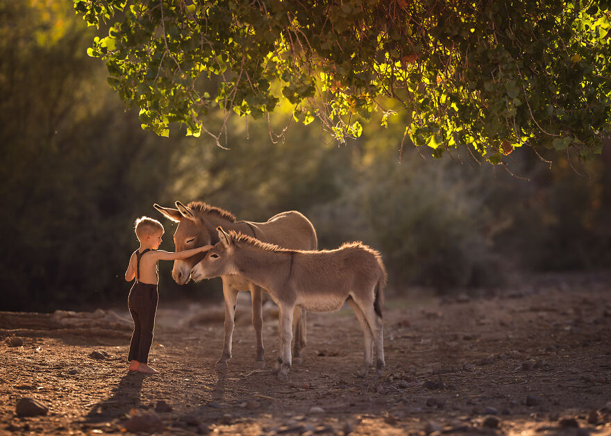 I Love Photographing The Gentle Nature Of My Children With Animals