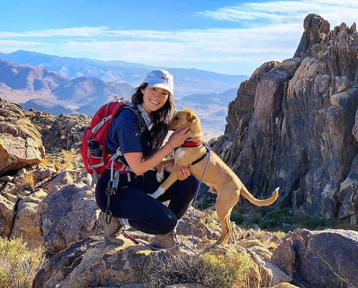 Meet Camper, The Stray Dog Who Chose His Owner And Are Now Nomadic Adventurers
