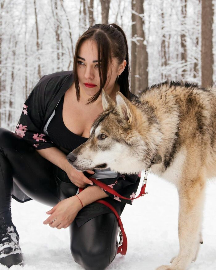 Woman Adopts A Wolf Cub From A Shelter Because It Wouldn't Have Survived In The Wild