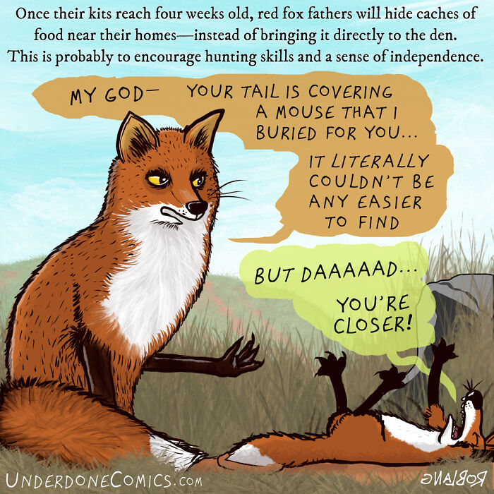 I Created Comics To Show How Weird, Wild And Hilarious Animal Fathers Are (20 Pics)