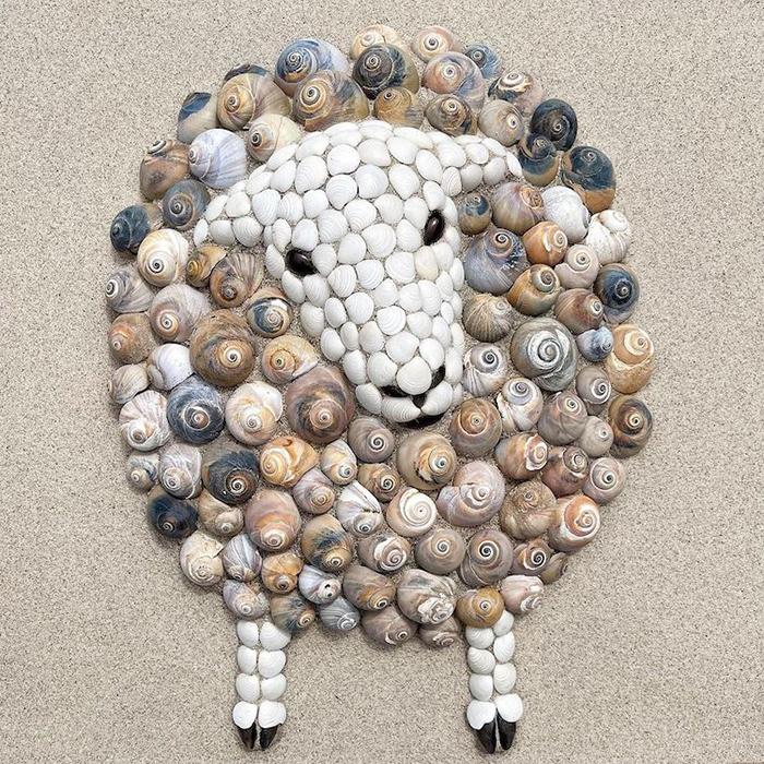 animals from seashells art anna chan 60d318fd57f65 700