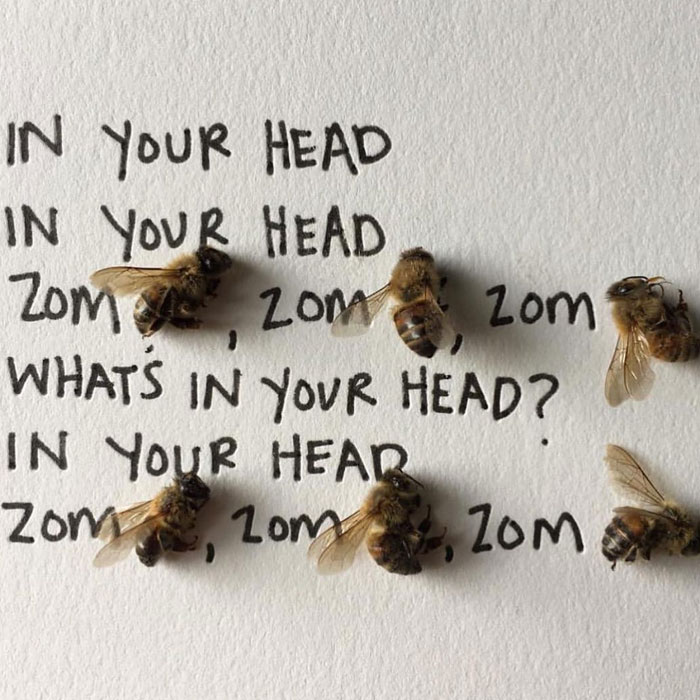 Artist Uses Insects To Make Fun And Quirky Cartoons, Here Are Her Best 70 Works