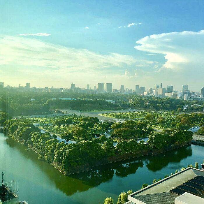 Tokio parece otro mundo