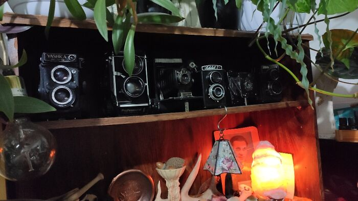 Tlr Cameras! They're All Functional, And My Oldest Is From WWI :)