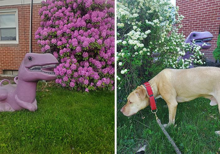 """We Came Home From Vacation To Find This Dinosaur """"Planted"""" In My Garden"""