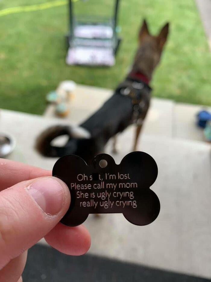 One Of Piper's Heckin Cool Tags Came In Today