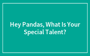 Hey Pandas, What Is Your Special Talent? (Closed)