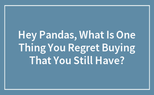 Hey Pandas, What Is One Thing You Regret Buying That You Still Have?