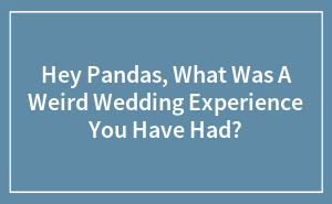 Hey Pandas, What Was A Weird Wedding Experience You Have Had?