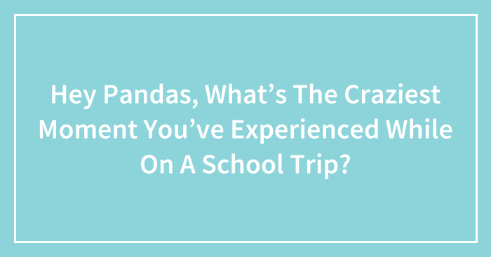 Hey Pandas, What's The Craziest Moment You've Experienced While On A School Trip? (Closed)