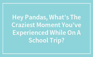 Hey Pandas, What's The Craziest Moment You've Experienced While On A School Trip?