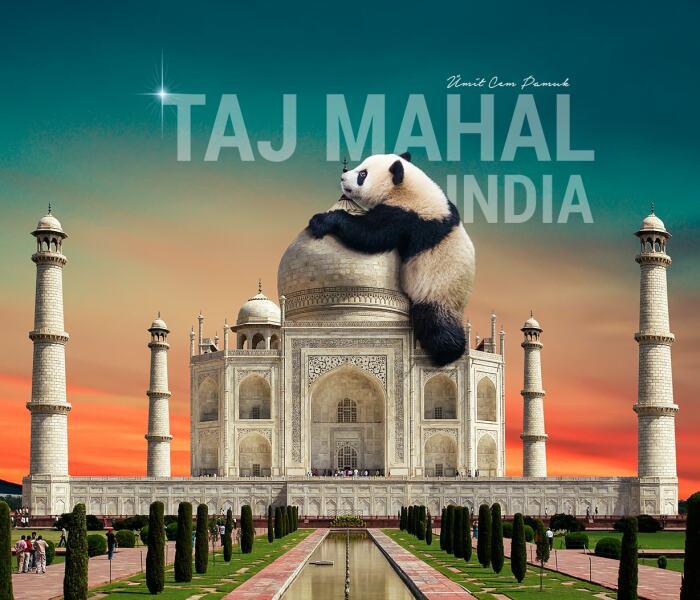 I Make Surreal Photo Manipulations Of Famous Landmarks And Animals