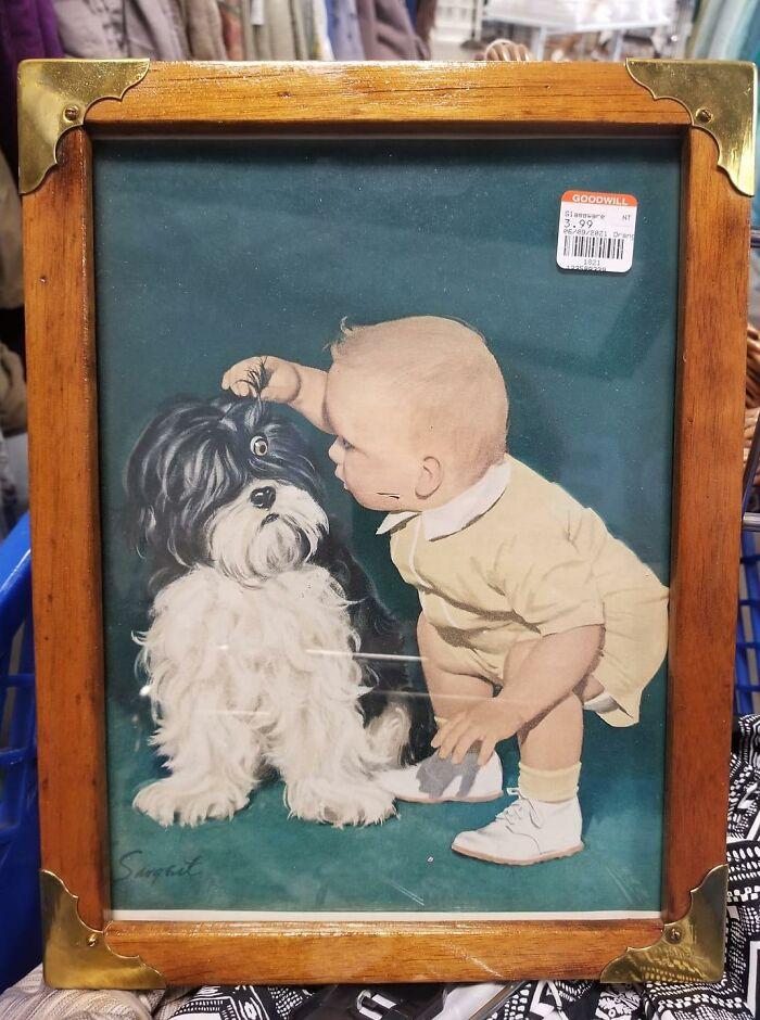Creo que puse la misma cara que el perro al ver esto