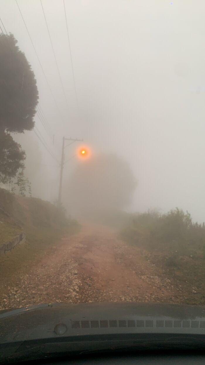 Sudden Fog Turned