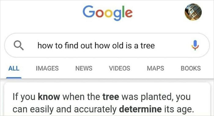 How Old Is A Tree