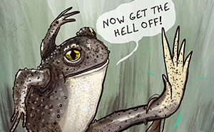 I Created Comics That Show How Some Animal Fathers Are Weird, Wild And Hilarious (20 Pics)
