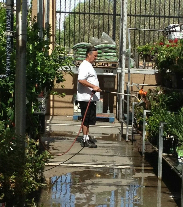 I Lost My Dad At Walmart And Ended Up Finding Him In The Garden Section Watering Plants