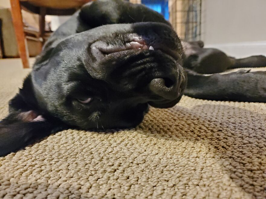 This Is His Upside-Down Evil Smile