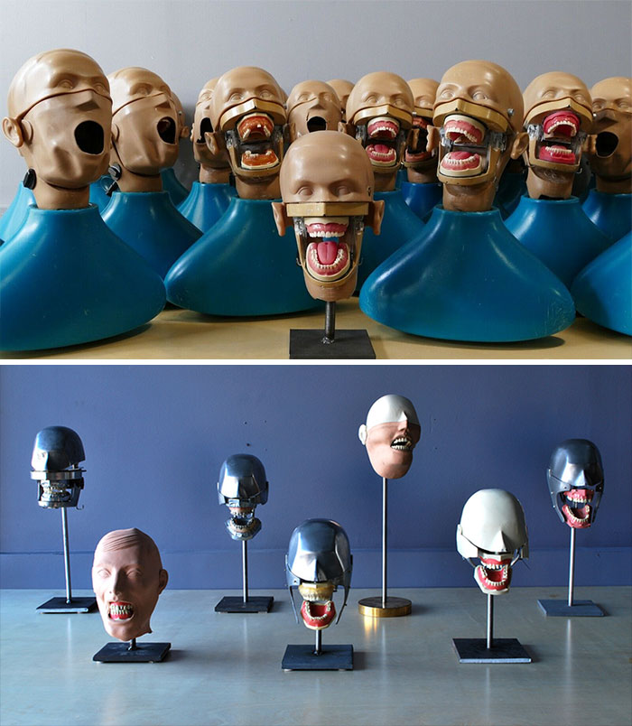 Dental Practice Heads