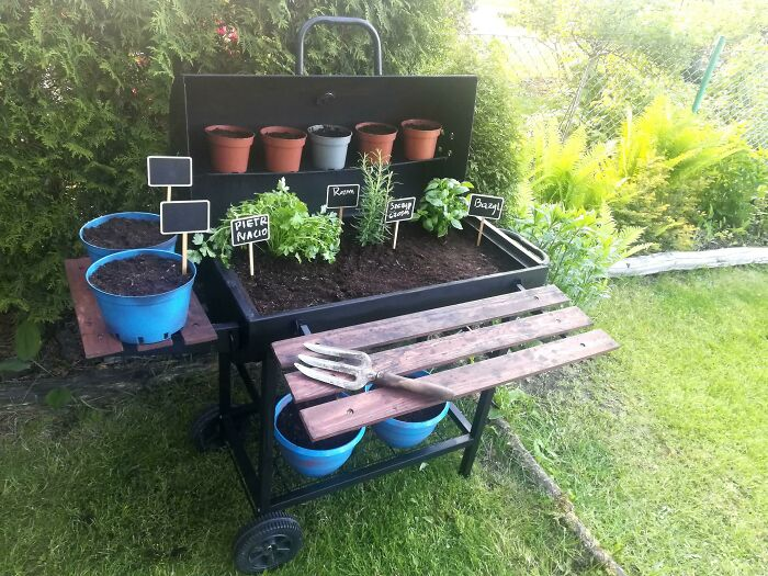 I Repurpoused My Old Grill Into A Small Herb Garden! I Hope All The Seeds Grow Soon