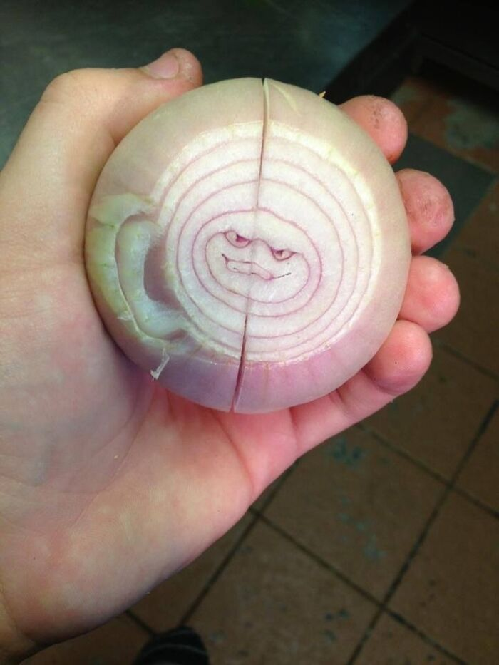 A Rather Sinister Onion