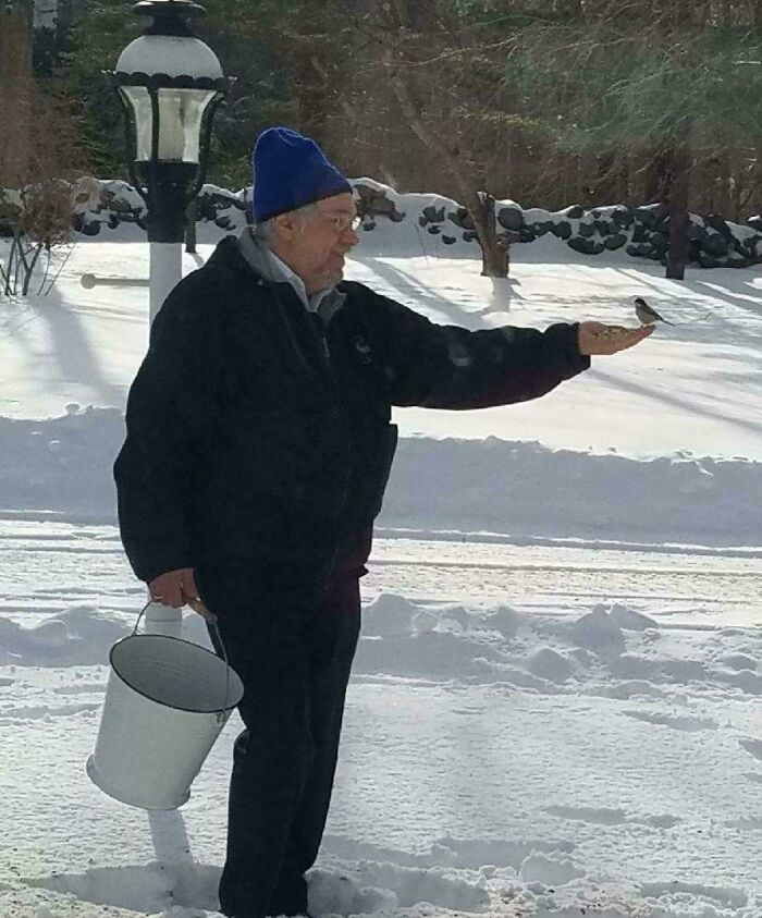 Dad Went Out In The Snow To Feed The Birds, And Made A New Friend! It's Official, He's A Disney Princess Now