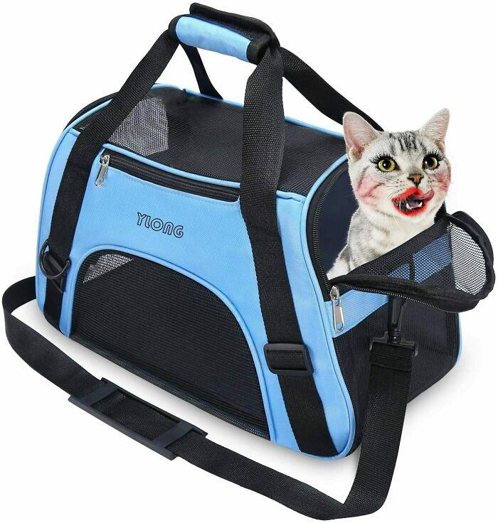 El mejor transportador de gatos para llevar a tu gato sexy