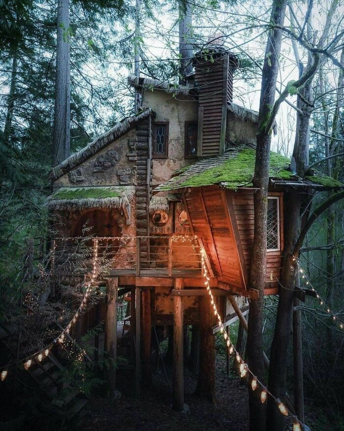 A Witchy Treehouse In Pacific Northwest