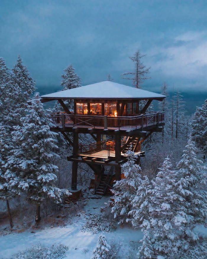 Winter Tree Cabin
