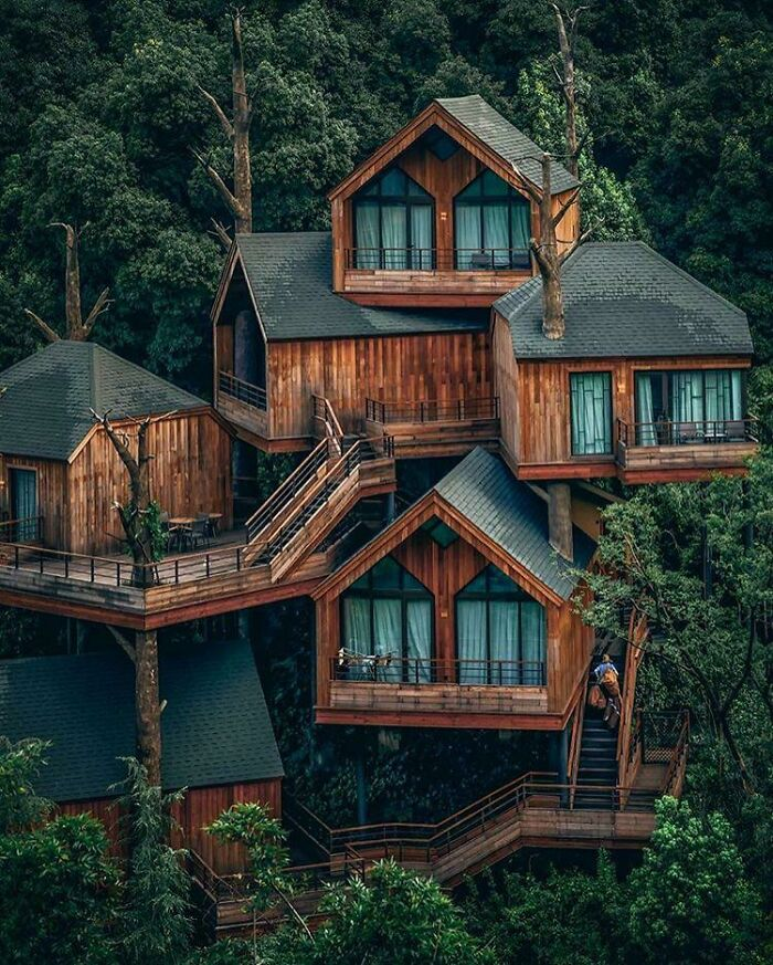 Modern Treehouse Cabin In Hangzhou, China