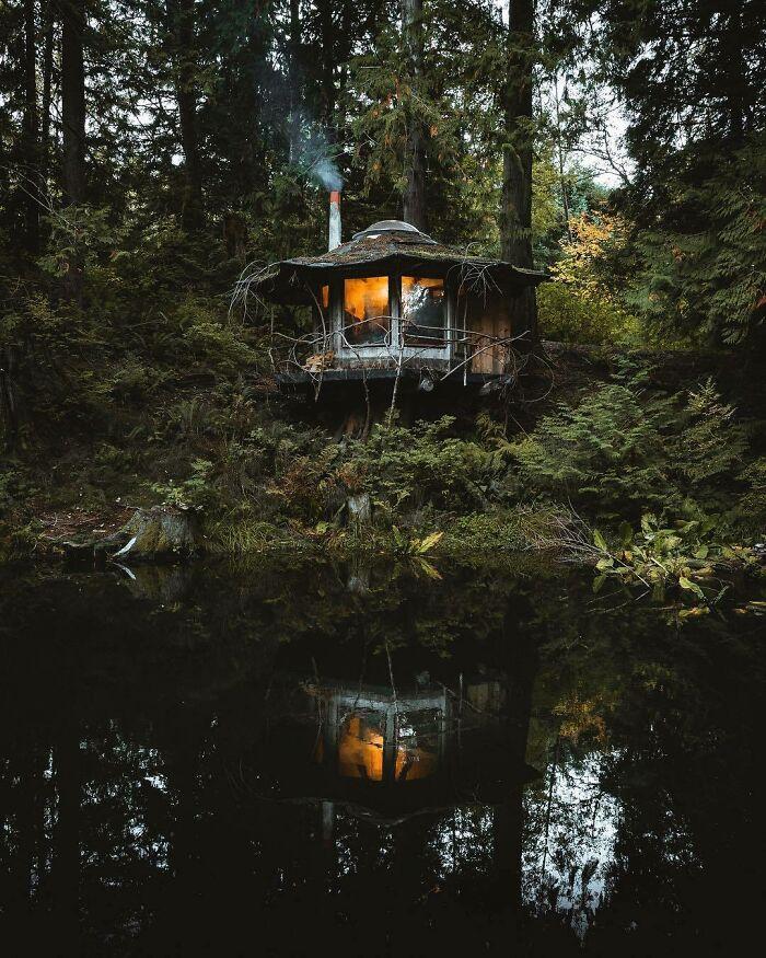 A Truely Photogenic Cabin In Washington