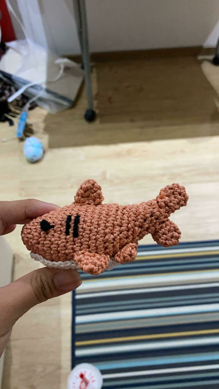 I Made A Shark Its Not The Best But Im 14 And I Tried
