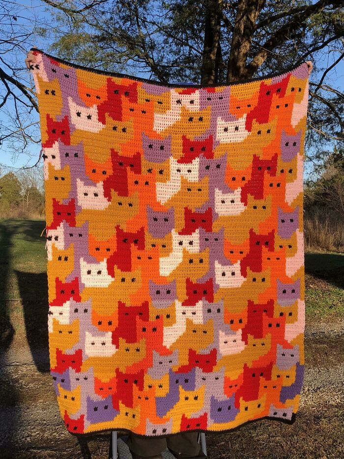 Fiiiinally Finished This Sunset-Colored Cat Blanket!